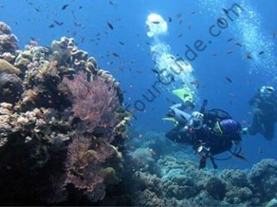 Takabonerate Underwater